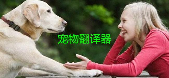 宠物翻译器大全